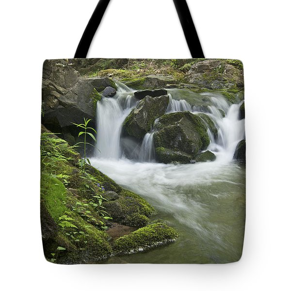 Big Pup Falls 3 Tote Bag by Michael Peychich