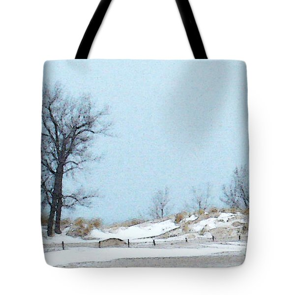 Tote Bag featuring the photograph Big Red Lighthouse - View 1 by Linda Shafer
