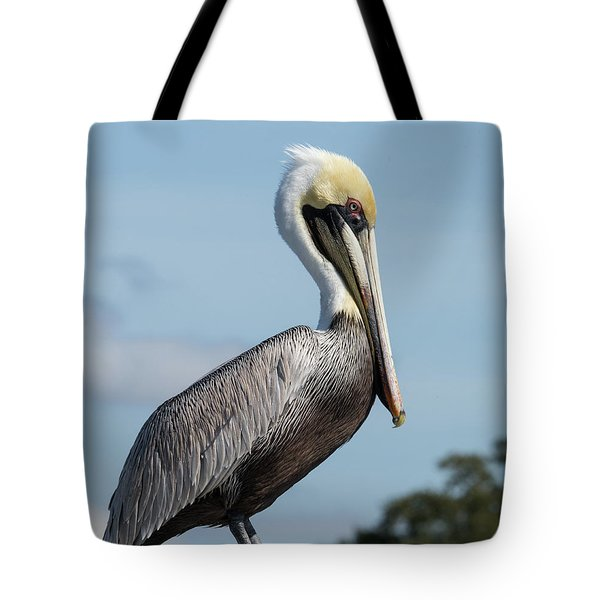 Biloxi Pelican Tote Bag