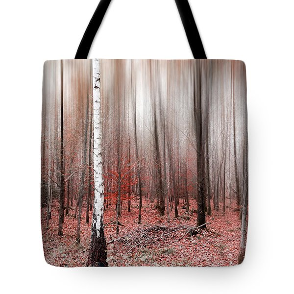 Tote Bag featuring the photograph Birchforest In Fall by Hannes Cmarits