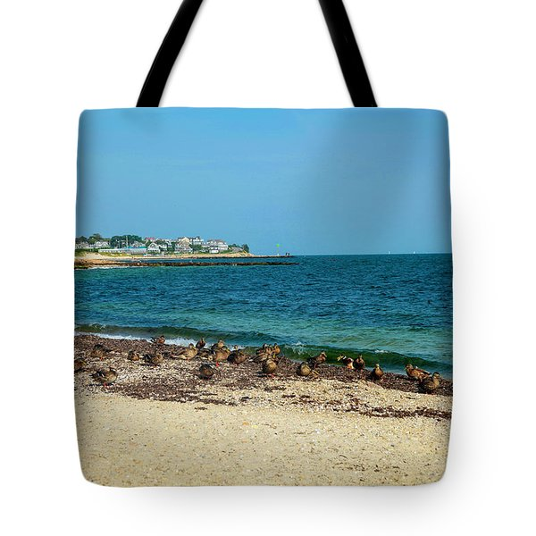 Tote Bag featuring the photograph Birds On The Beach by Madeline Ellis