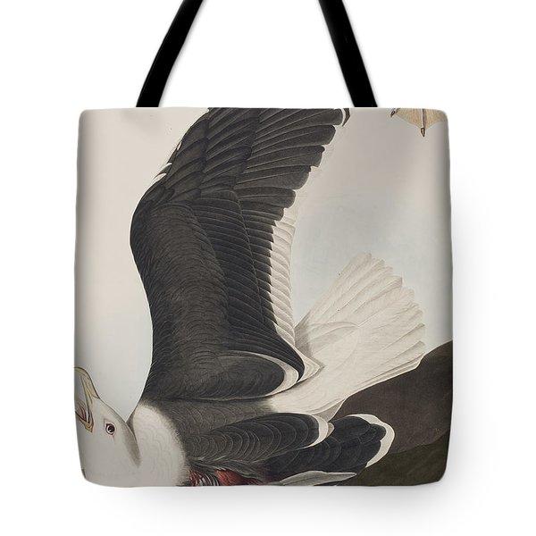 Black Backed Gull Tote Bag