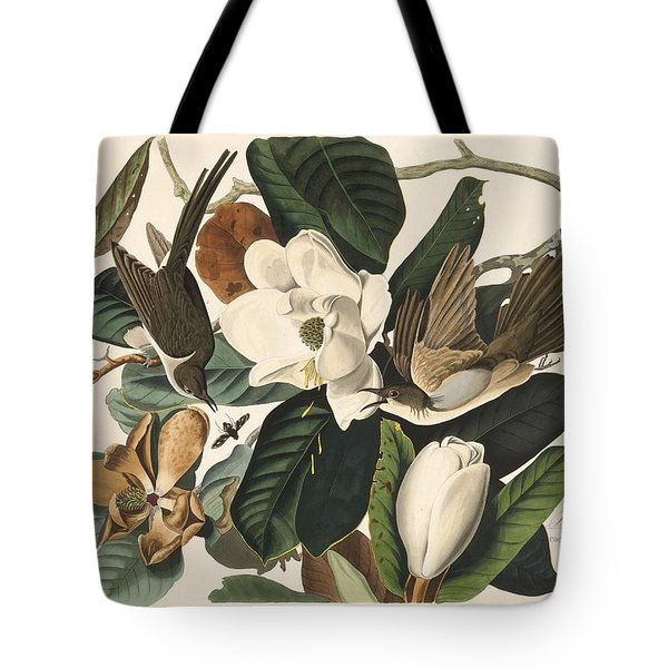 Black-billed Cuckoo Tote Bag by Rob Dreyer