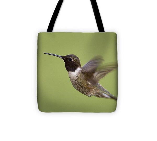Black-chinned Hummingbird Tote Bag by Doug Herr