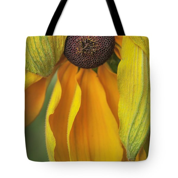 Black-eyed Susan Tote Bag