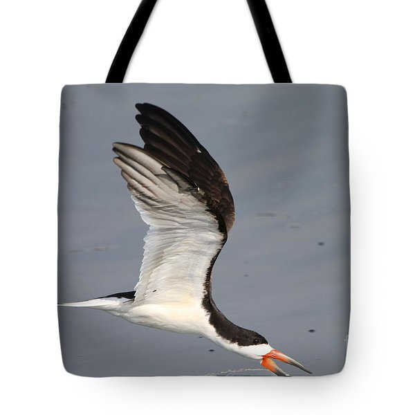 Tote Bag featuring the photograph Black Skimmer  by Kathy Gibbons