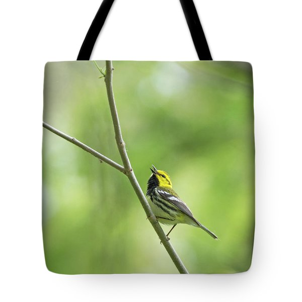 Black-throated Green Warbler Tote Bag