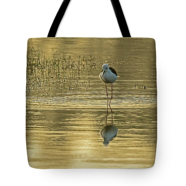 Black-winged Stilt Tote Bag