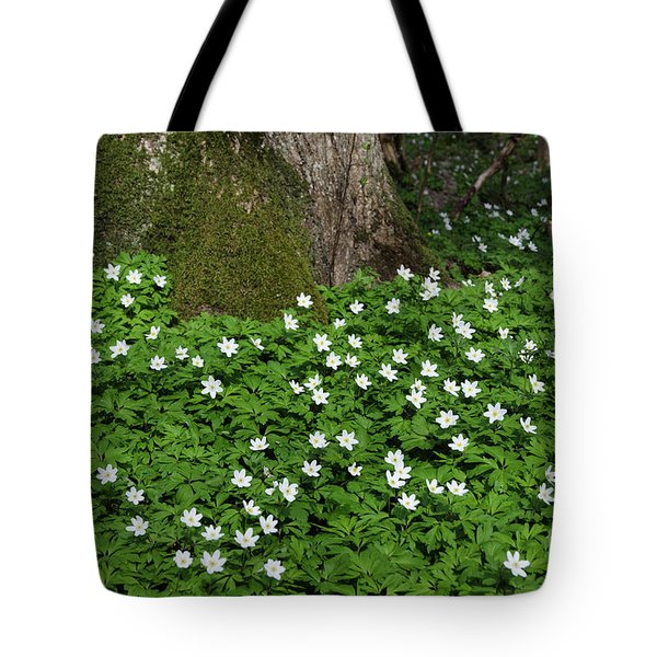 Tote Bag featuring the photograph Blossom Windflowers by Kennerth and Birgitta Kullman