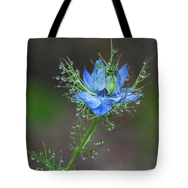Tote Bag featuring the photograph Blue Bloom On Weed Plant by Richard J Thompson
