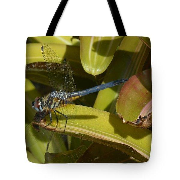 Blue Dasher Tote Bag