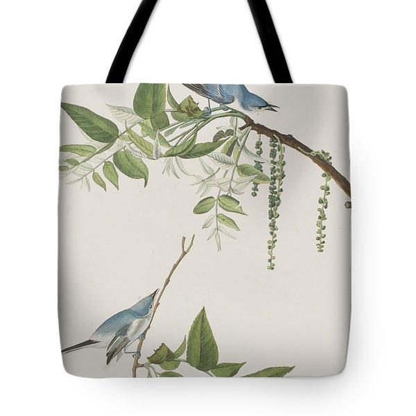 Blue Grey Flycatcher Tote Bag