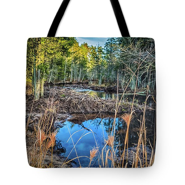Tote Bag featuring the photograph Blue Reflection by Louis Dallara