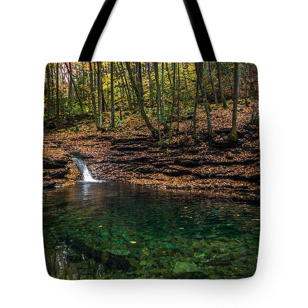 Tote Bag featuring the photograph Blue Ridge Cascade by Serge Skiba