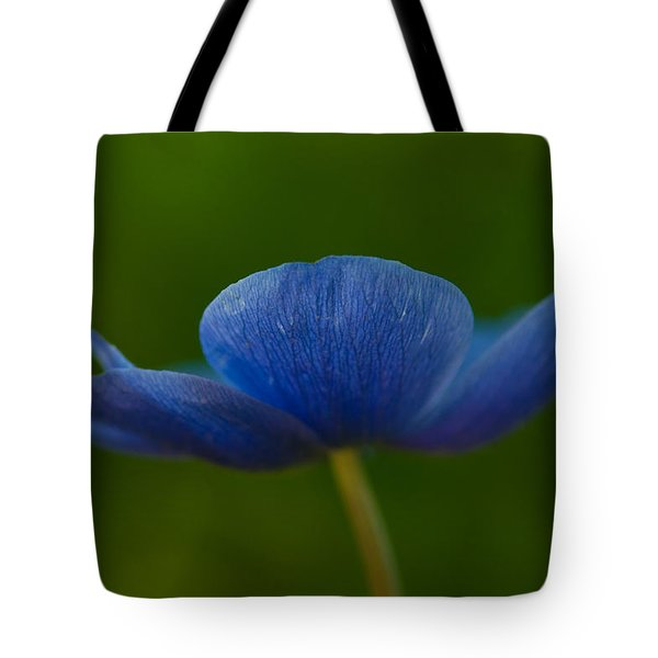 Blue Star Tote Bag by Carolyn Dalessandro