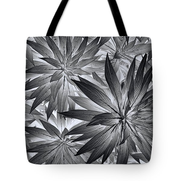 Tote Bag featuring the photograph Botanical by Wayne Sherriff