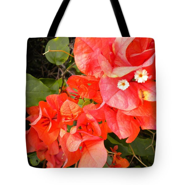 Bouganvilla 1 Tote Bag by Renate Nadi Wesley
