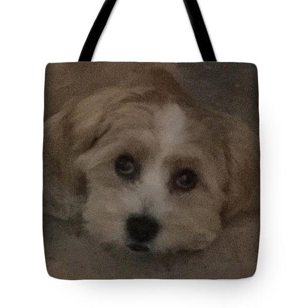 Brandy Tote Bag