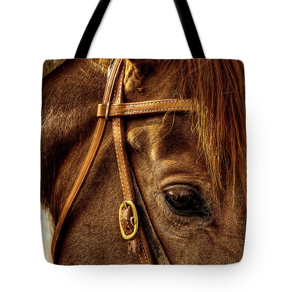 Bridled Tote Bag by David Patterson