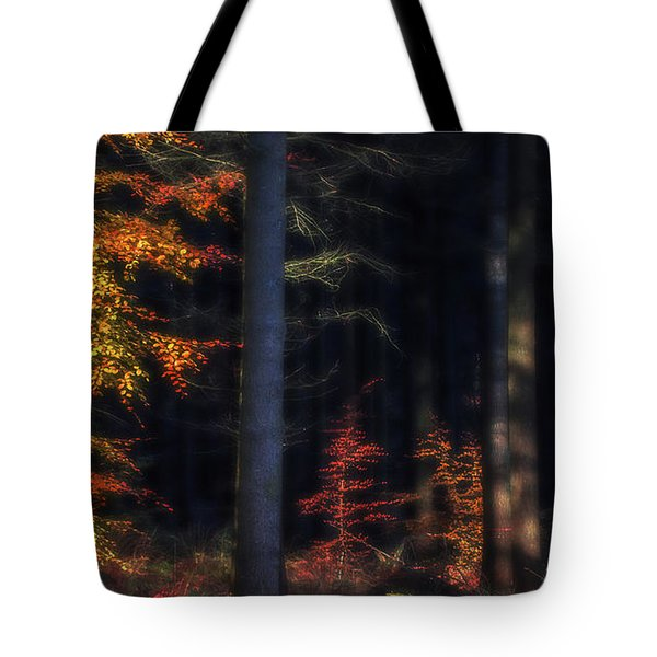 Broceliand's Light Tote Bag