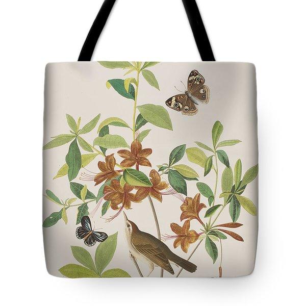 Brown Headed Worm Eating Warbler Tote Bag by John James Audubon
