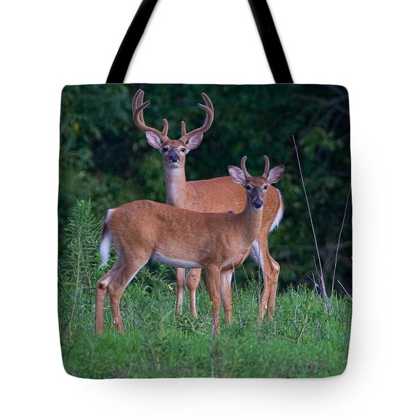 Buck Father And Son Tote Bag