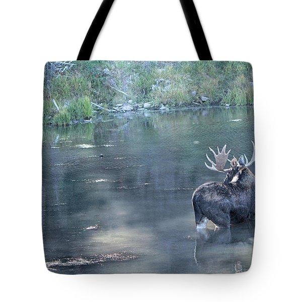 Bull Moose Reflection Tote Bag