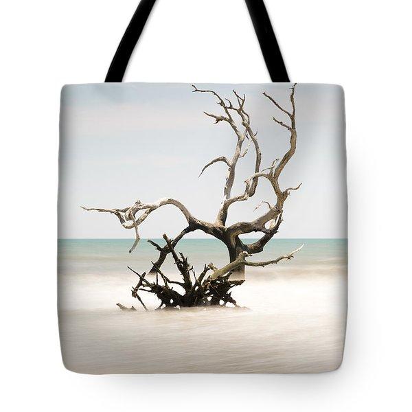 Bulls Island C-vi Tote Bag