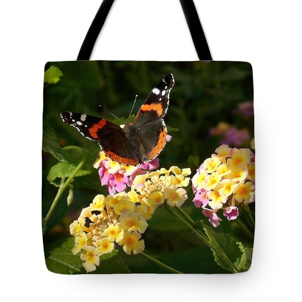 Tote Bag featuring the photograph Busy Butterfly Side 2 by Felipe Adan Lerma