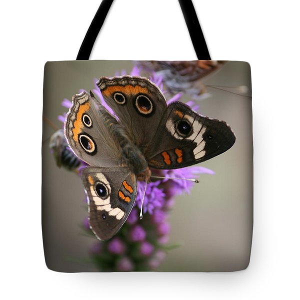 Buckeye Butterfly Tote Bag by Cathy Harper
