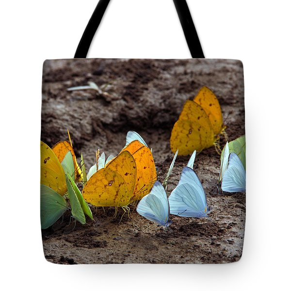 Butterflies Eating Minerals Tote Bag by Aivar Mikko