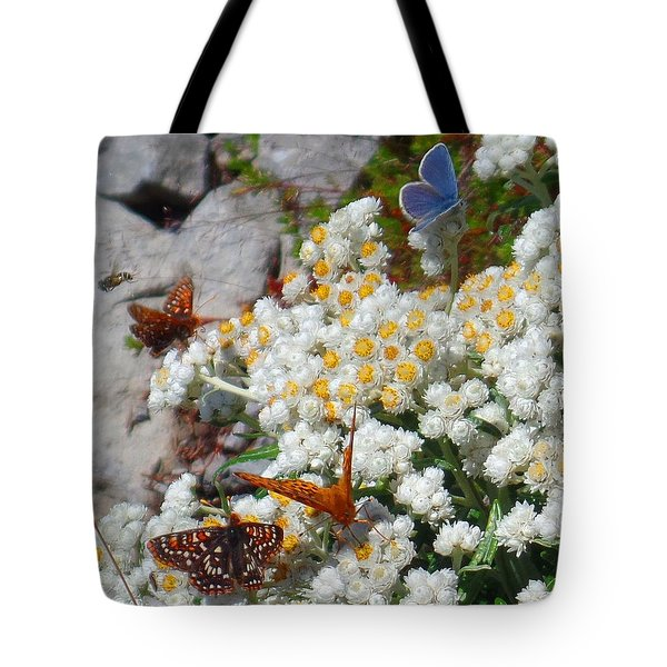 Tote Bag featuring the photograph Butterfly Extravaganza by Karen Molenaar Terrell