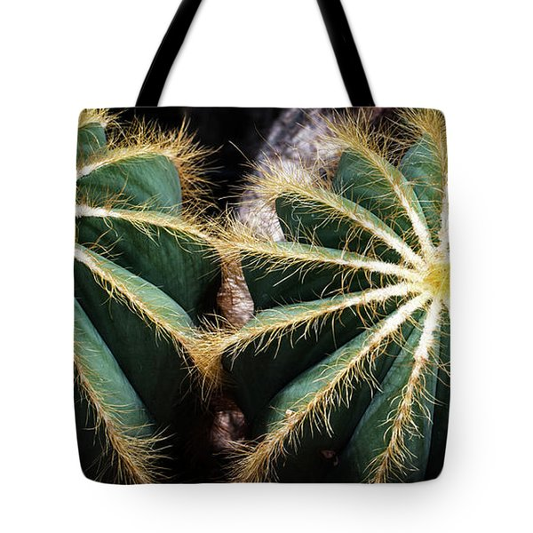 Tote Bag featuring the photograph Cactus  by Catherine Lau