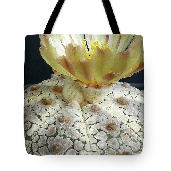 Cactus Flower 1 Tote Bag