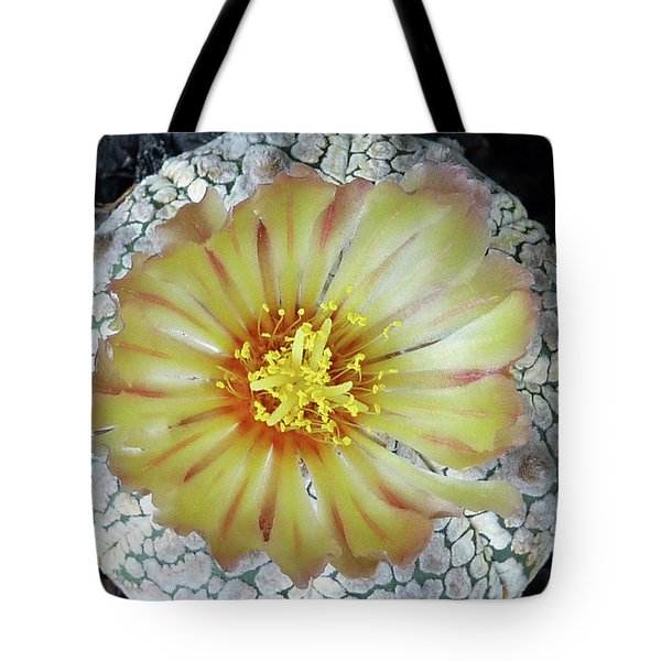Cactus Flower 2 Tote Bag
