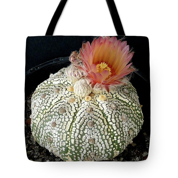 Cactus Flower 4 Tote Bag