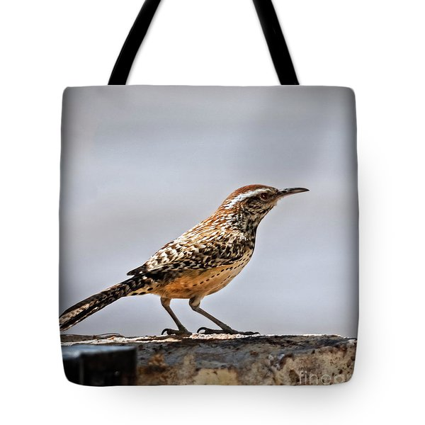 Tote Bag featuring the photograph Cactus Wren by Robert Bales