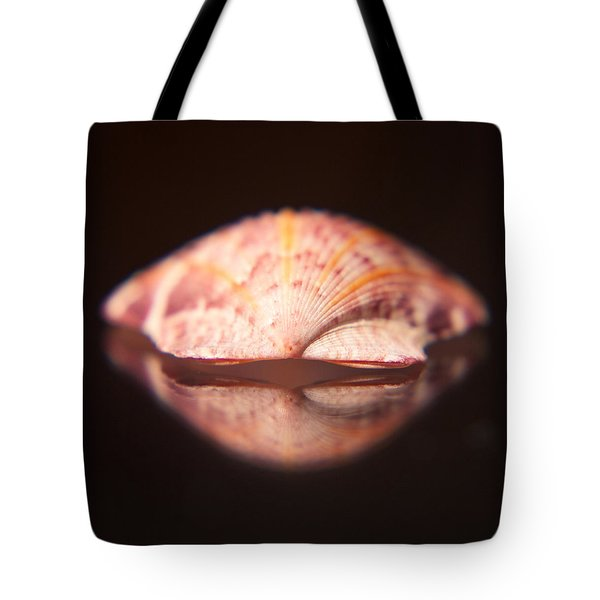 Calico Scallop Tote Bag