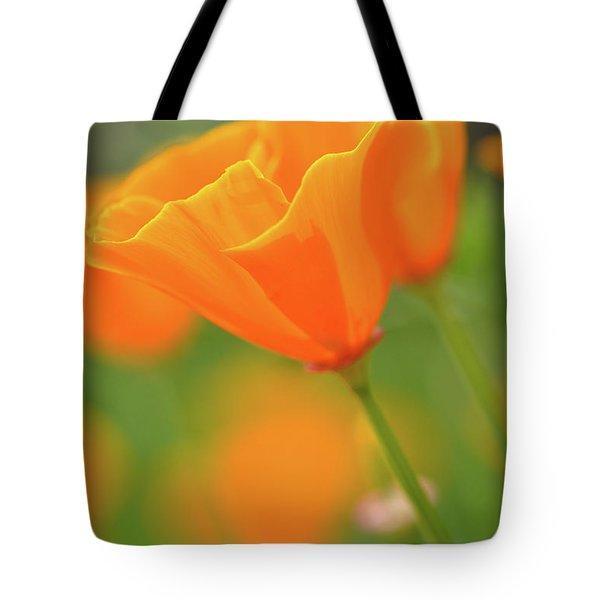 California Spring Poppy Macro Close Up Tote Bag