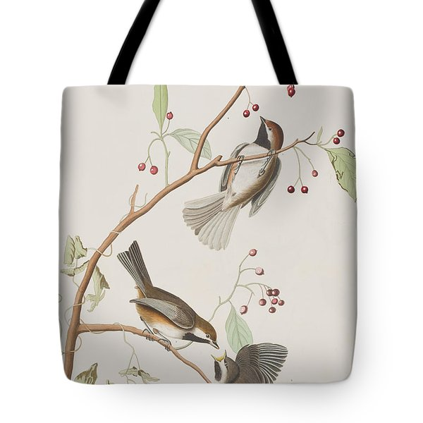 Canadian Titmouse Tote Bag