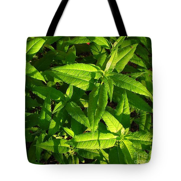 Covering Tote Bag