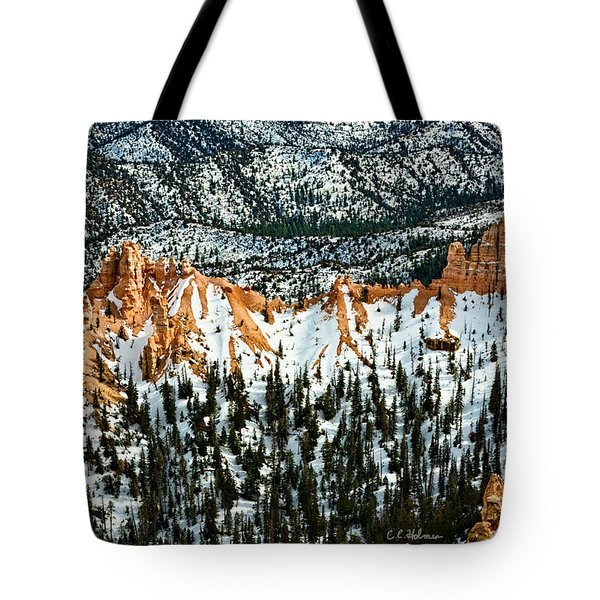 Canyon View Tote Bag by Christopher Holmes