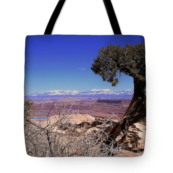 Canyonlands 4 Tote Bag by Marty Koch