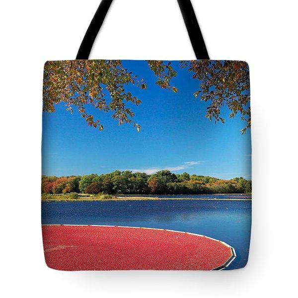 Cape Cod Cranberry Bog Tote Bag by Matt Suess