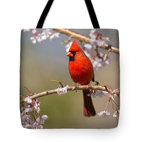 Tote Bag featuring the photograph Cardinal In Cherry by Angel Cher
