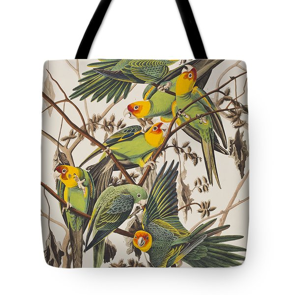 Carolina Parrot Tote Bag by John James Audubon