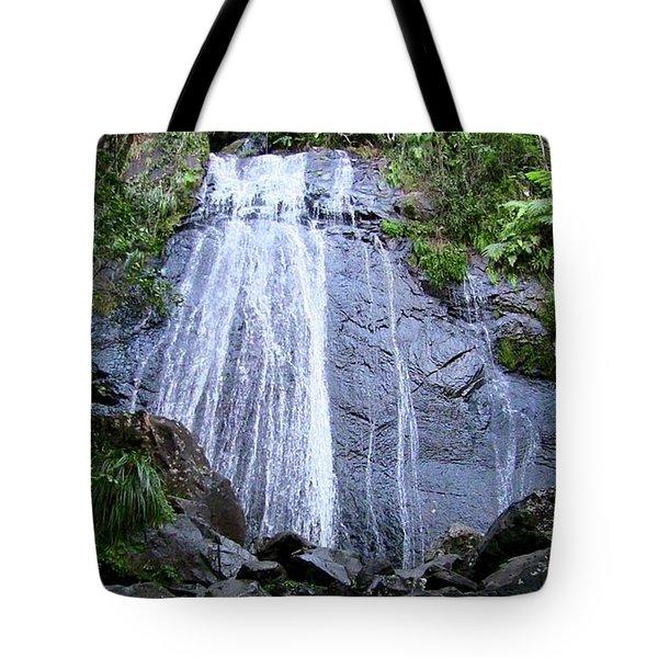 Cascada La Coca Tote Bag