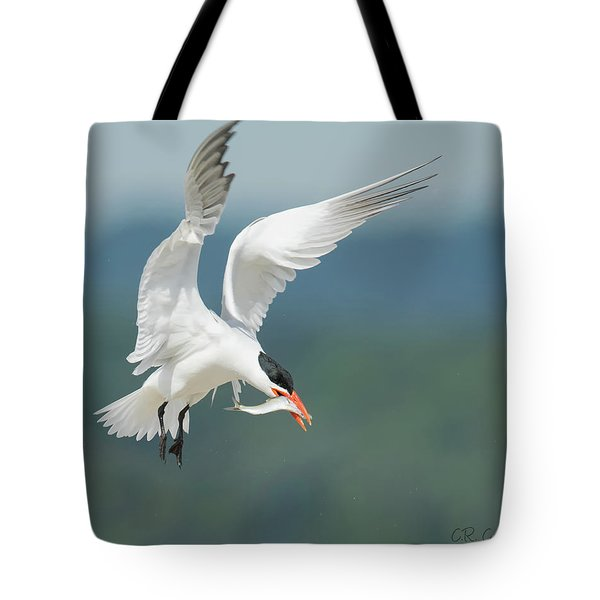 Caspian Tern With Fish Tote Bag