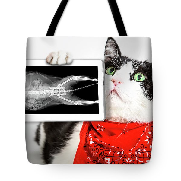 Tote Bag featuring the photograph Cat With X Ray Plate by Benny Marty