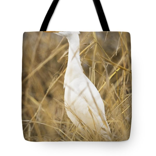 Cattle Egret Tote Bag by Doug Herr